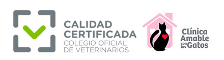 clinica veterinaria gatos certificado de calidad
